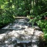 Wildwasser in Brandenburg – Paddeln auf dem Rheinsberger Rhin