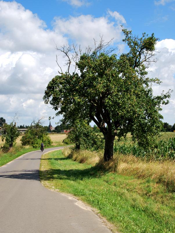 Komfortables Radeln auf asphaltierten Wegen. Foto: Kleine Fluchten Berlin