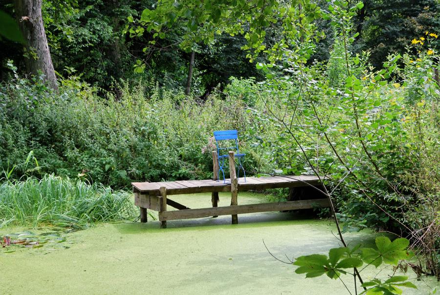 Platz im Teich