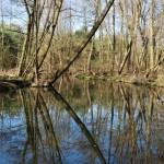 Löcknitztal: Flussidylle zwischen Landstraße und Autobahn