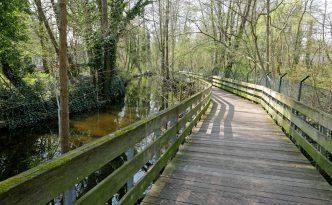Holzbohlwenweg am Tegeler Fließ