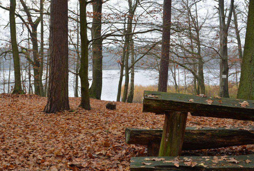 Blick auf den Mühlenbecker See
